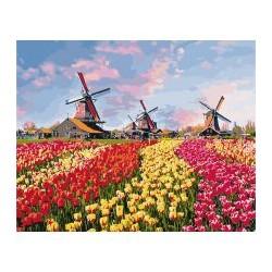 """Набір для розпису по номерах. Сільський пейзаж """"Барвисті тюльпани Голландії"""" 40*50см"""