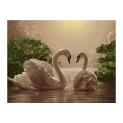 """Тварини, птахи """"Пара лебедів"""" 40*50см   КНО301"""